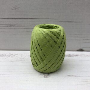 Coloured Raffia: Green
