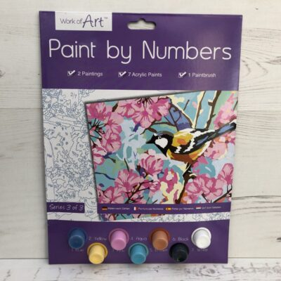 Paint by Numbers Basic: Bird