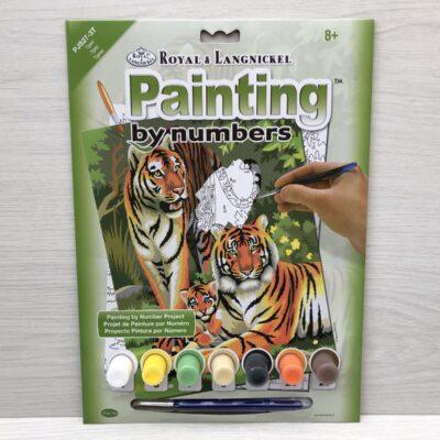 Paint by Numbers: Tigers (Junior-Medium)