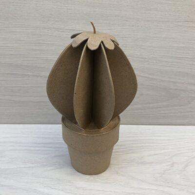 Papier-Mâché Spine Cactus (M)